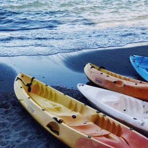 kayak-tours-mew-smyrna-beach